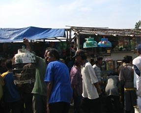 かつら工場訪問記 インドネシア鳥市場