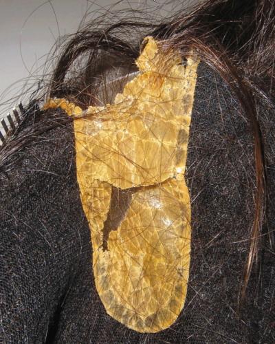 かつら人工皮膚コーティングの傷みの例