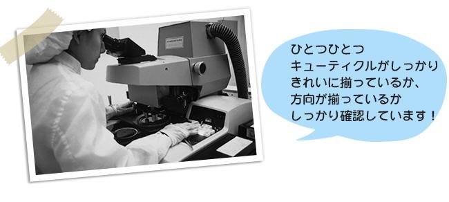 キューティクルを顕微鏡でチェック1画像